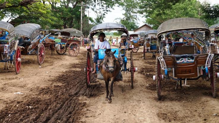 Innwa horse carriage