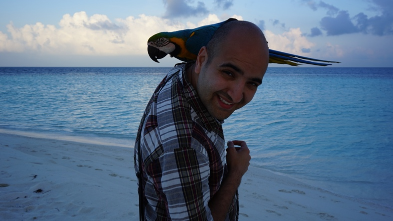 A local parrot of Mahibadhoo. He was born here and belongs to owner Mazin of Noovilu Suites,